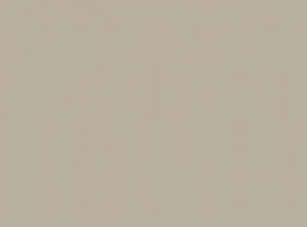 Duni Papier Tischsets 35x45cm greige  - 4x250 Stück