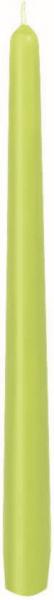Duni Leuchterkerzen 250x22mm kiwi - 2x50 Stück