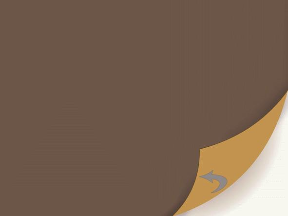 Duni Dunicel Sets 30x40 chestnut/honey  - 5x100 Stück