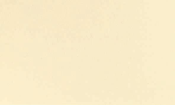 Duni Evolin Mitteldecke 84x84 cream - 84 Stück