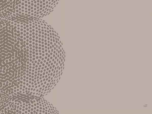 Duni Papier Tischsets 30x40cm Organic - 4x250 Stück