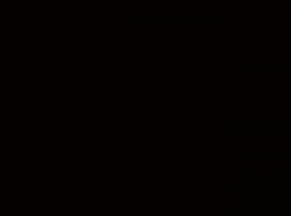Duni Papier Tischsets 35x45cm schwarz  - 4x250 Stück