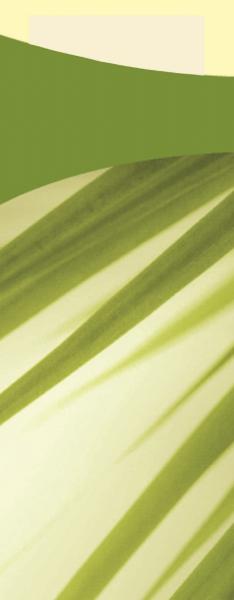Duni SACCHETTO 190x85mm Bamboo/Servietten cream - 5x100 Stück