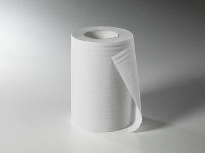 Fripa Handtuchpapier Rolle 1-lag. weiß